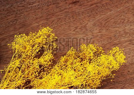 A bouquet of yellow flowers resting on a brown background
