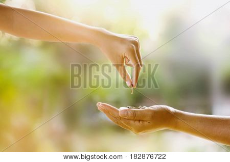 hand giving money for investment the future