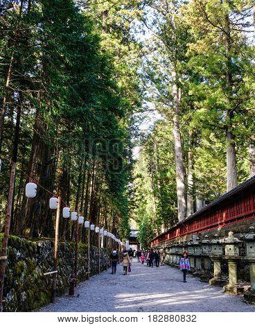 Ancient Shinto Shrine In Nikko, Japan