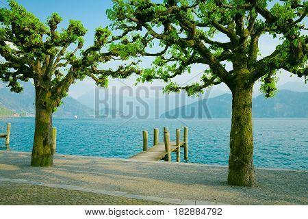 Lake Lucerne Switzerland. Weggis wooden pier and trees.