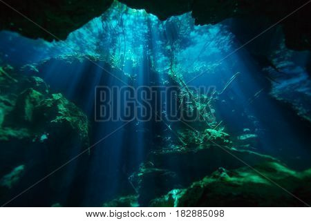 Beautiful underwater world of Azul cenote of Quintana roo in Mexico
