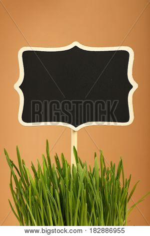 Spring Green Grass And Black Sign Over Brown
