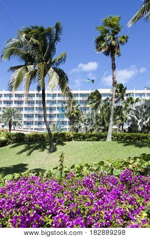 Tropical nature and resort building on Paradise Island (Bahamas).