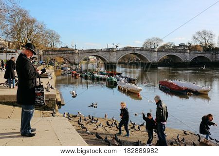 LONDON, UK - FEBRUARY 16, 2016: Man looking at his mobile phone while children feed the birds on the bank of Thames river on a sunny spring day. Richmond Bridge on the background.