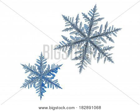 Two snowflakes, isolated on white background. This set composed from photos of real snow crystals: very big stellar dendrites with six long, elegant arms with many side branches and complex shape.