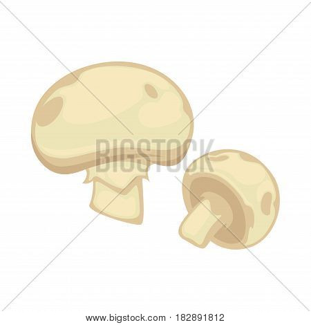 Big and small white champignon with gray spots isolated. Graphic icon of realistic fresh beneficial mushrooms. Realistic vector illustration of raw edible agaric fungus flat design cartoon style