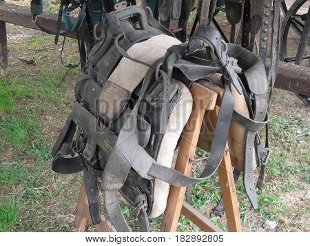 Worn leather horse bridles and bits hanging on wooden fence