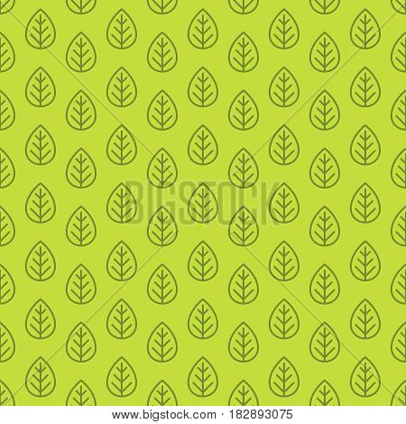 Leaves seamless pattern green color line style for decoration organic shop, nature firm, ecology company, garden, green unity, natural product store, farming, forest. Vector Illustration