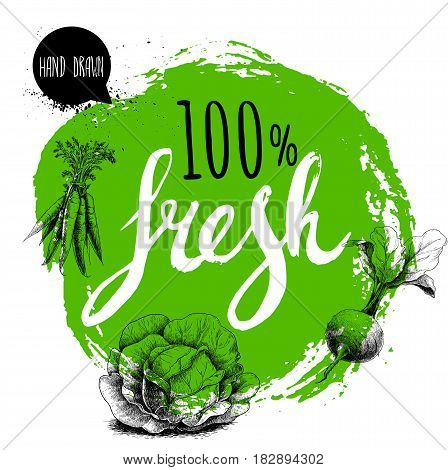 Farmer 100% fresh veggies design template. Green rough circle with hand painted letters. Engraving sketch style vegetables. Carrot bunch beet root with leafs and cabbage. Hand drawn design.
