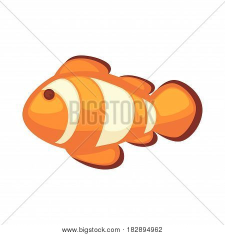 Clownfish or anemonefish vector illustration isolated on white background. Cartoon fish in orange and whitey colors, home pet aquarium habitant, sticker or label logo in flat style design