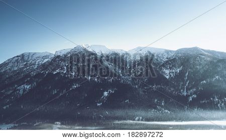 Snow-capped peaks with their slopes covered in pine forests in an alpine landscape under a cold wintry blue sky with sunshine