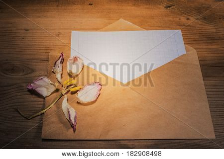 Background art still-life- on the table with the envelope (pressed) is a dry tulip.