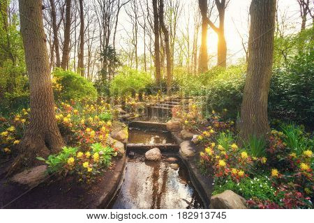 Blooming Spring Park With Water Cascade