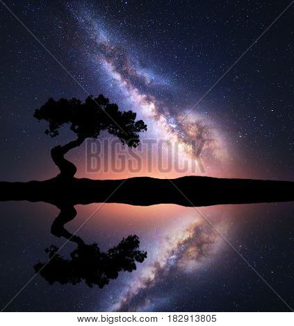 Milky Way With Alone Tree On The Hill Near The Lake