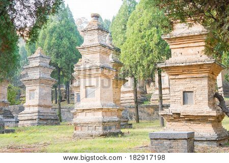 Henan, China - Nov 09 2015: Talin(buddhist Pagoda Forest) In Shaolin Temple(world Heritage Site). A