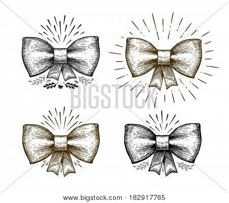 Hand drawn bow. Holiday symbol. Bowknot sketch, vector illustration isolated on white background