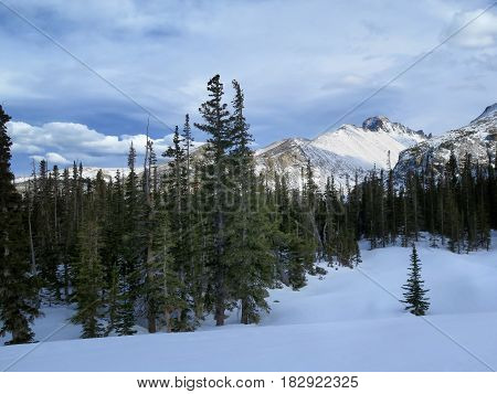 Snow covered landscape with trees and Longs Peak mountain in Rocky Mountain National Park