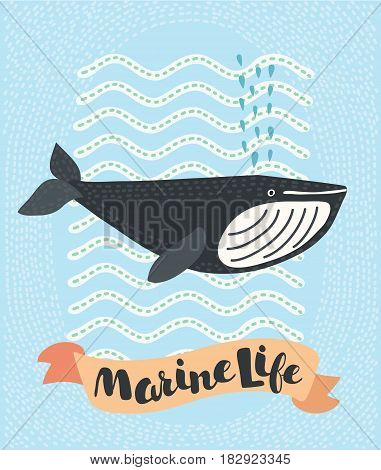 Vector cartoon illustration of whale. Graphic element for Logo, character of whale, greeting card, banner, flyer or poster. Animal logo. Marine logo. Marine art