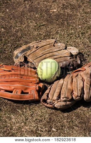 softball with 3 softball mitts laying in the grass