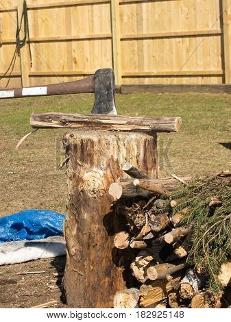 axe splitting camp fire wood on a stump.