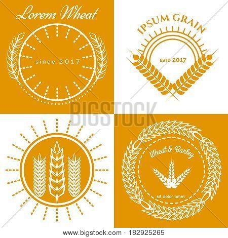 Grain ears concept logo design collection. Vector illustration