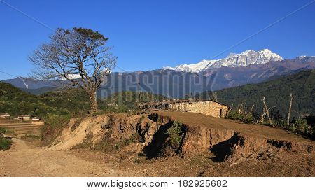 Scene on the way to Ghale Gaun. Tree shed and snow capped Annapurna range.