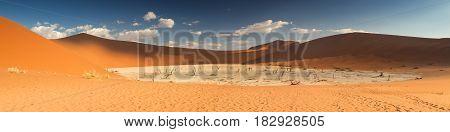 Panorama of the Dead Vlei salt pan Sossusvlei Namibia Africa