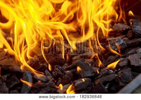 Coal And Fire Flame