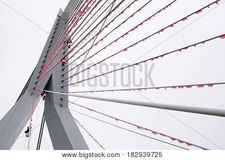 Climbers Hanging Orange Flags On The Erasmus Bridge