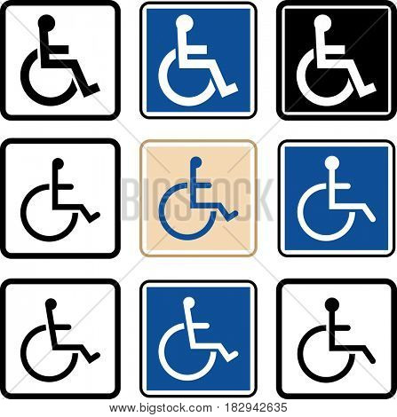 Access Icon (Disabled Handicap Symbol)  Raster Illustration