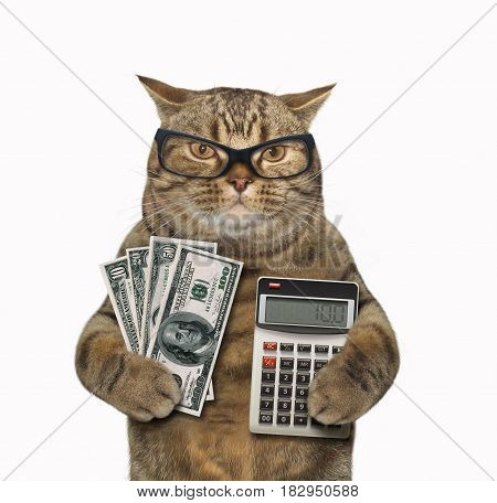 The cat banker is holding a a bunch of money in one paw and a calculator in other. White background.
