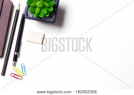 Pencils, notebook and cactus lie on the desktop.