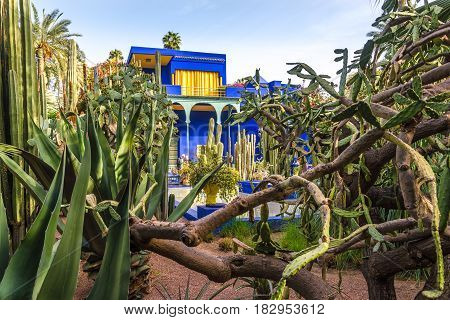 MARRAKESH, MOROCCO - APRIL 1,2017 - Museum of Islamic Art painted in Majorelle Blue at the Majorelle Garden in Marrakesh. Marrakesh is the fourth largest city in the Morocco.