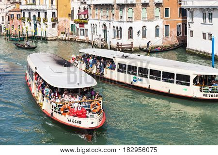 View Of Water Buses In Grand Canal In Venice