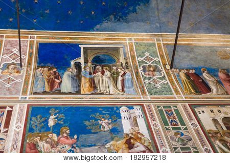 Wall And Ceiling Paintings In Scrovegni Chapel