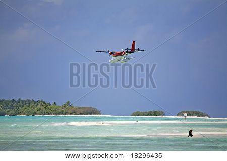 Twin Otter Landing At A Resort