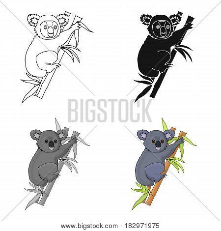 Australian koala icon in cartoon design isolated on white background. Australia symbol stock vector illustration.