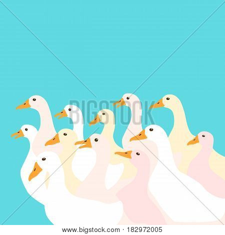 a flock of ducks vector illustration style Flat