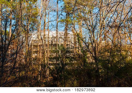 The parking building behind the lush thicket of the park in sunny autumn day