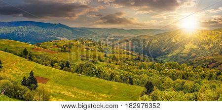 Forest On A Mountain Hillside In Rural Area At Sunset
