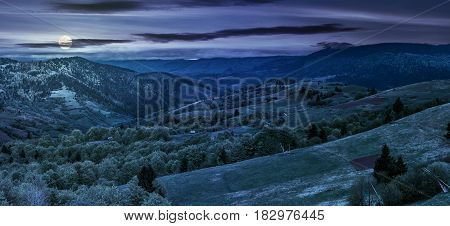 Forest On A Mountain Hillside In Rural Area At Night