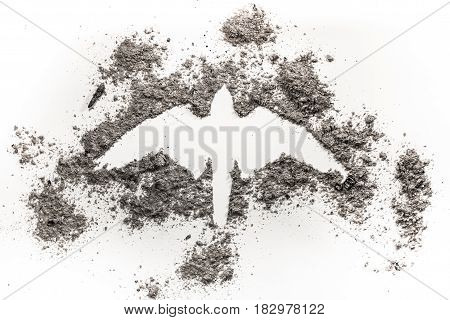 Falcon hawk phoenix eagle silhouette drawing made in grey ash as rebirth birth death life ecology disaster fire freedom concept symbol illustration