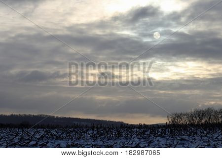 The sun rises behind a colorless cloudy sky.