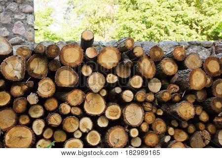 Firewood stacked near the fence. Lumber sawn logs closeup