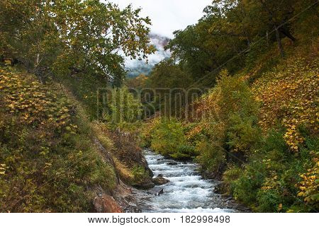 The river flows between the forested forests on Kamchatka the autumn landscape.