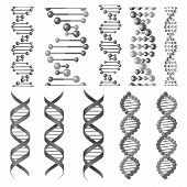 DNA or RNA helix vector isolated icons. Symbols of chromosome cell molecule, molecular chain of human genes or genome for genetics medical concept design or scientific research laboratory poster