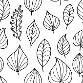 Coloring Page Seamless Pattern with Fall. Black and White Contour Leaves for Coloring Book. Doodle Art leaves Continued Background. poster