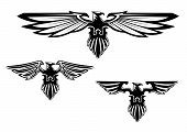 Heraldry eagle symbols for tattoo and mascot design poster