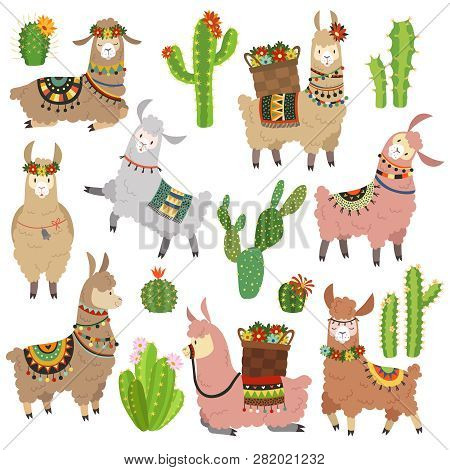 Llama Cactus. Chile Llamas Alpaca And Cacti Wild Lama. Peru Camel, Girl Scrapbook Kids Funny Element