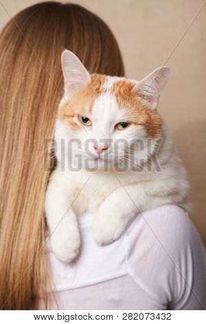 Drowsy Sleeping White Cat On A Womans Shoulder. White Cat On The Shoulder Of A Blonde.